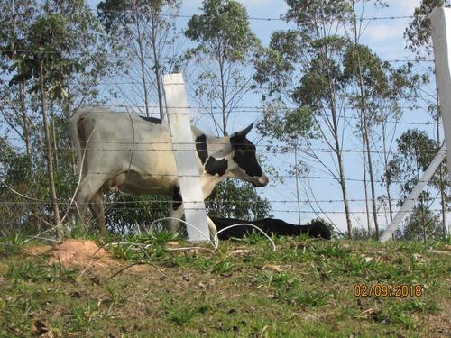 (ra) venha correndo garantir terras em nazaré paulista