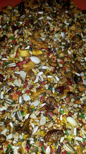 racion de frutas y semillas para aves!!