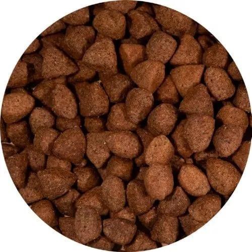 ração bob dog gold premium especial carne e frango 15kg