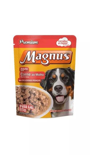 ração magnus todo dia premium 15kg + brinde