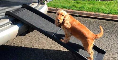 rampa para mascotas/carga ultra ligera rampa de cajuela