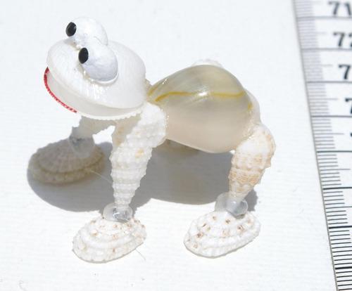 rana hecha de las conchas naturales, desde bahamas