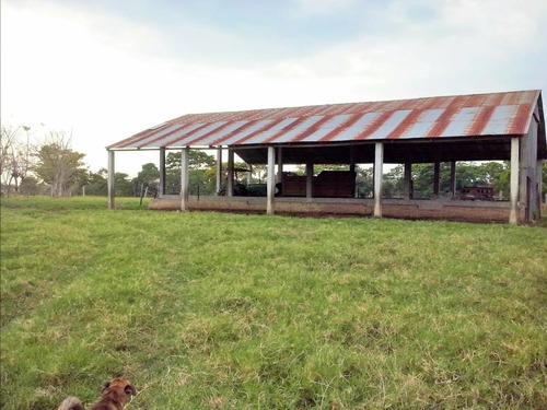 rancho 31.7 has., excelente ubicación y oportunidad