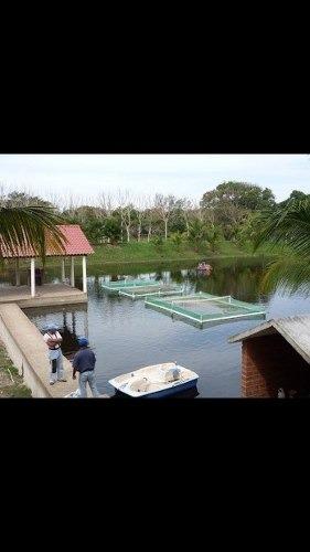 rancho acuícola agrícola, paraíso frutal para fraccionar