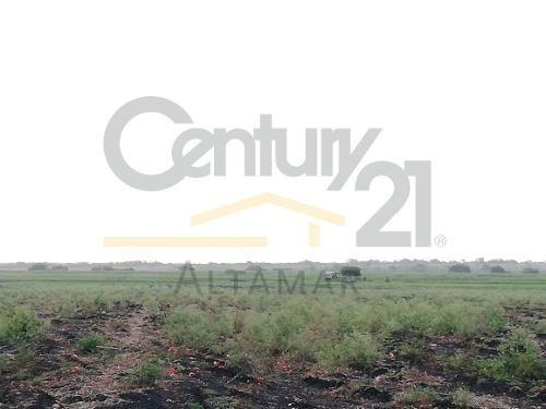 rancho agrícola en venta, km 41 carr. tampico-mante, ejido río tamiahua, altamira, tamps.