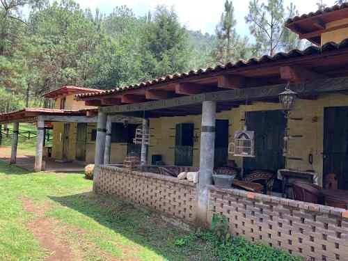 rancho cerro gordo
