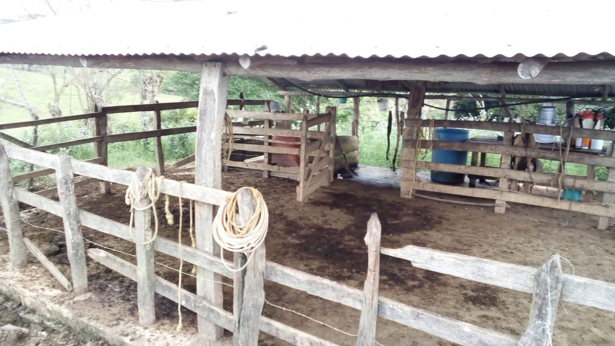 rancho chiapas