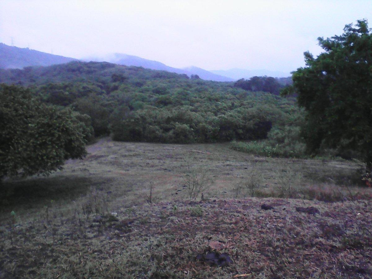 rancho  ciudad valles, san luis potosí con producción,  suelo caña