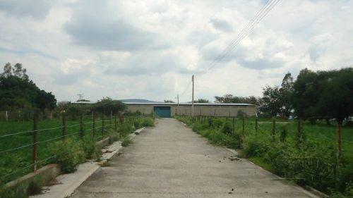 rancho, con caballerisas, lienzo, casa, área de siembra, pozo de agua a pie de carretera!! gánelo