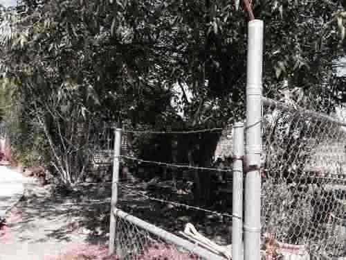 rancho de 22.5 hectareas en venta san miguel de allende