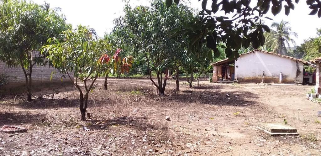 rancho  de 81 hectáreas