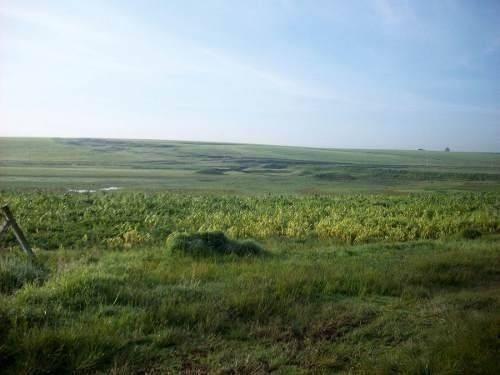 rancho de guadalupe tlachayola
