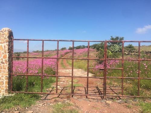 rancho ecológico en venta, santa anna matlavat