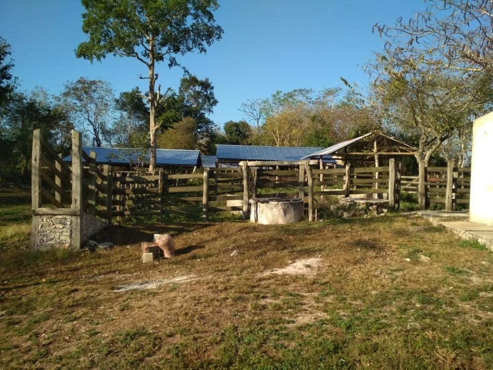 rancho ek balam