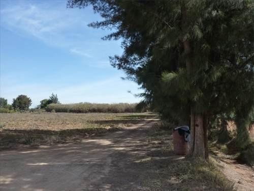 rancho el cardonal en venta, san miguel de allende gto