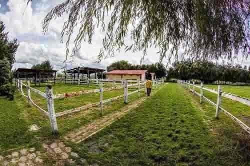 rancho el sapia