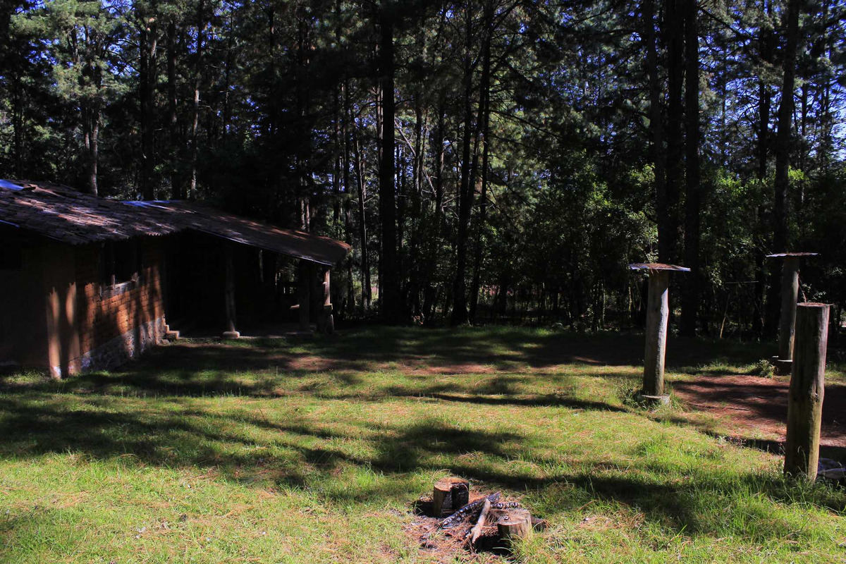rancho en medio del bosque