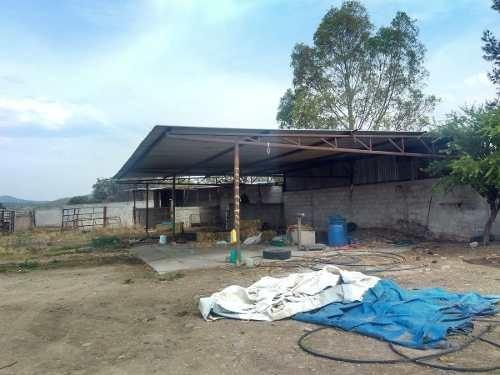 rancho en renta en los bordos huimilpan (uc)