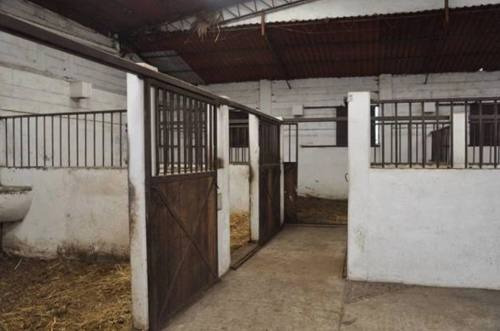 rancho  en san miguel ajusco / tlalpan - gsi-744-ra#