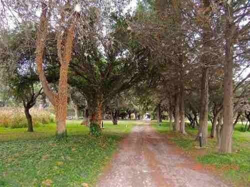 rancho en san miguel de allende 53 hectáreas con 3 pozos.
