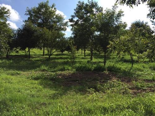 rancho en venta, dolores y san miguel hidalgo