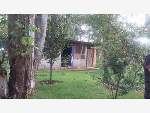 rancho en venta el mejor lugar, vive con la tranquilidad del campo, a solo 30 min. de la ciudad.