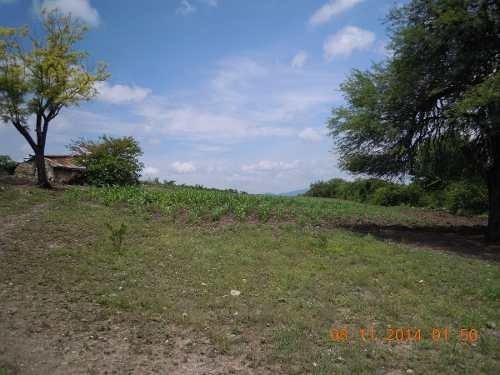 rancho en venta en guadalcazar san luis potosi