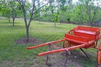 rancho en venta en morelos ii, monterrey