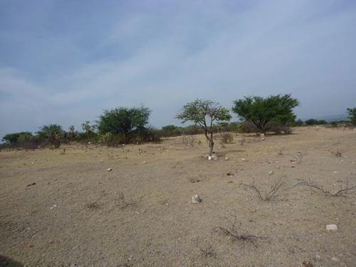 rancho en venta en palo colorado , san miguel de allende gto