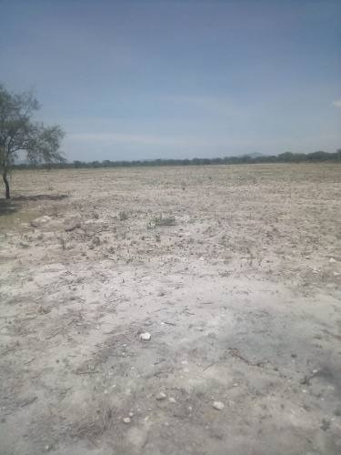 rancho en venta en rio verde san luis potosi