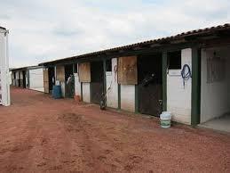 rancho equino en venta en metepec