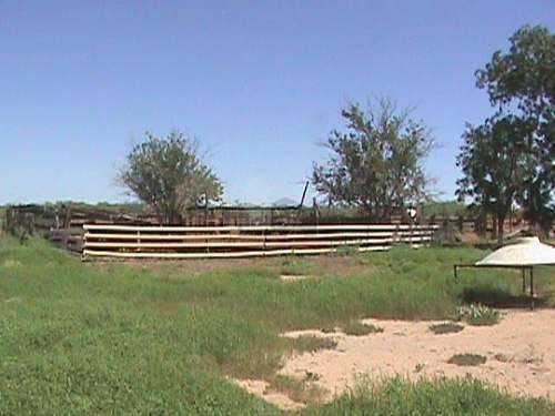 rancho ganadero en venta en coyame loma de caballo