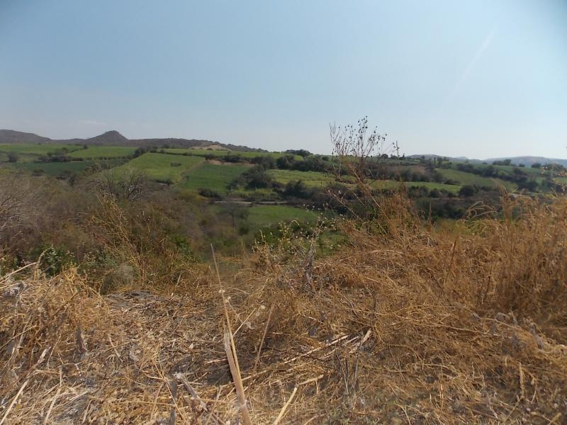 rancho hacienda en venta, tlaltizapán de zapata, morelos