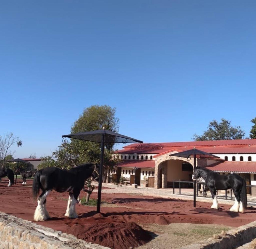 rancho hacienda hectareas caballos granja en venta en mexico