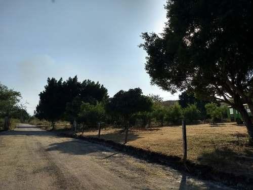 rancho los laureles terrenos en tlaltizapan morelos