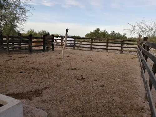 rancho mesa del seri