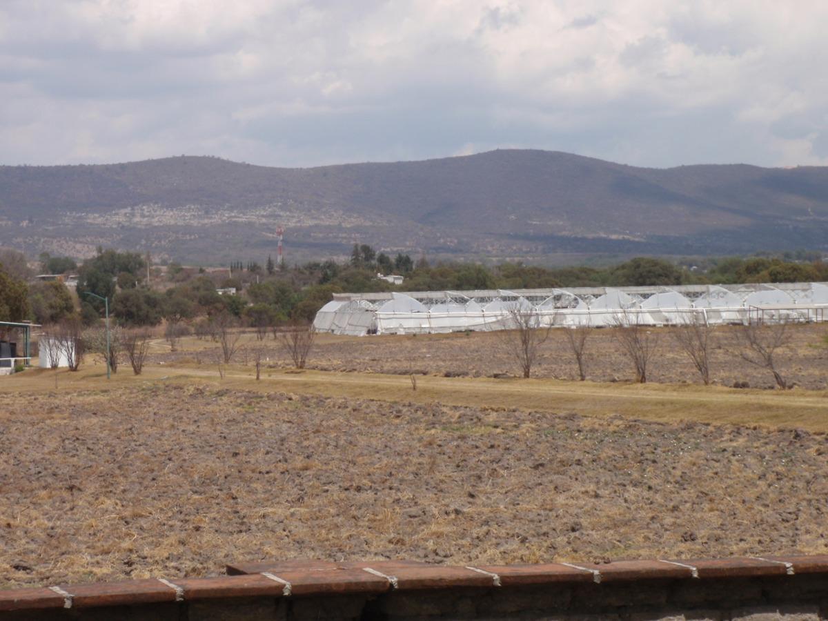 rancho por africam zafari