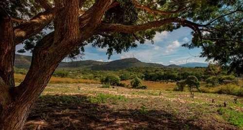 rancho santa mónica lote 27