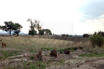 ranchos en venta en aculco de espinoza, aculco