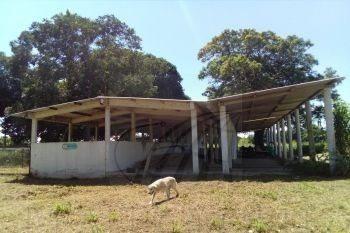 ranchos en venta en playa de vacas, medelln de bravo