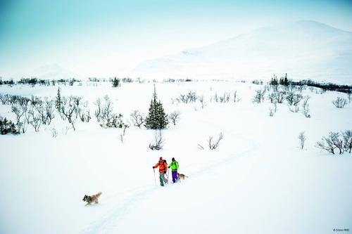 raqueta de nieve tsl 438 up&down grip e-nonstop