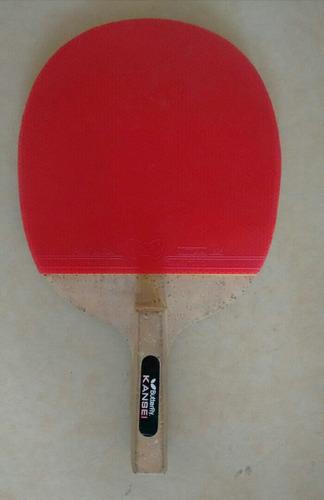 raqueta pingpong mesa profesional butterfly kansei fitness