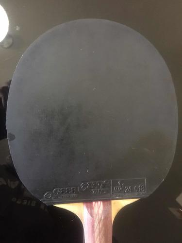 raqueta tenis de mesa pingpong dhs 4002