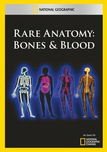 Rara Anatomía De Los Huesos Y De La Sangre - $ 979.29 en Mercado Libre