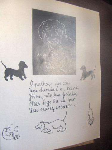 raro reflexões em torno do  cão   desenhos alberto apfel
