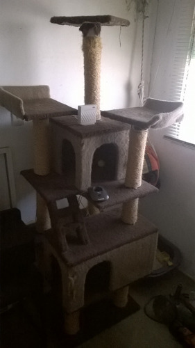 rascador arañador casa de gatos