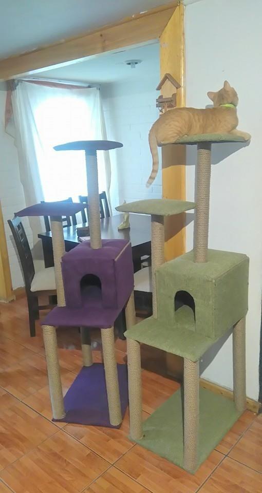 Rascador casa y cama para gato en mercado libre for Casa y cama