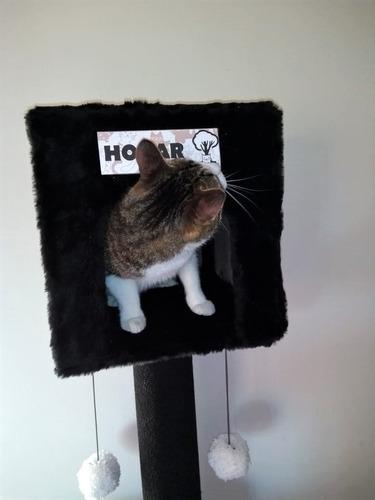 rascadores gimnasio para gatos (eden gatuno)triple con hogar