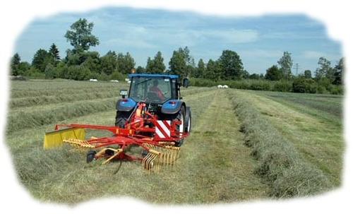 rastrillo minos giroscopico maquinaria agrícola