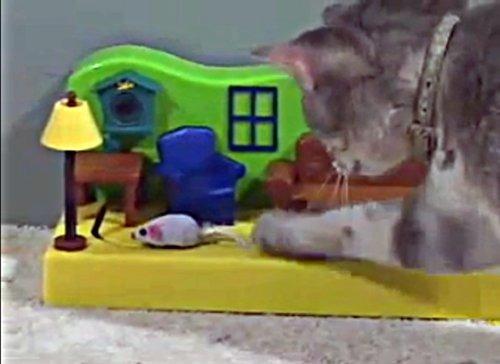 ratón en la casa juguete automático para gato
